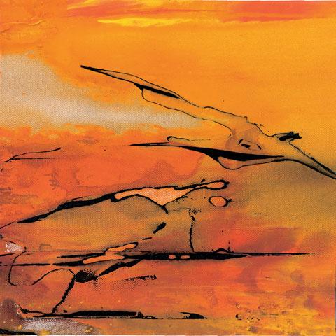 Colore di Pompei 2004