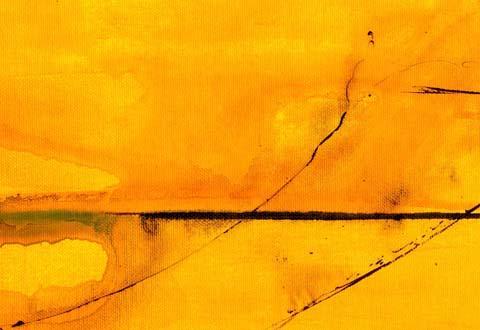 Namib 2006